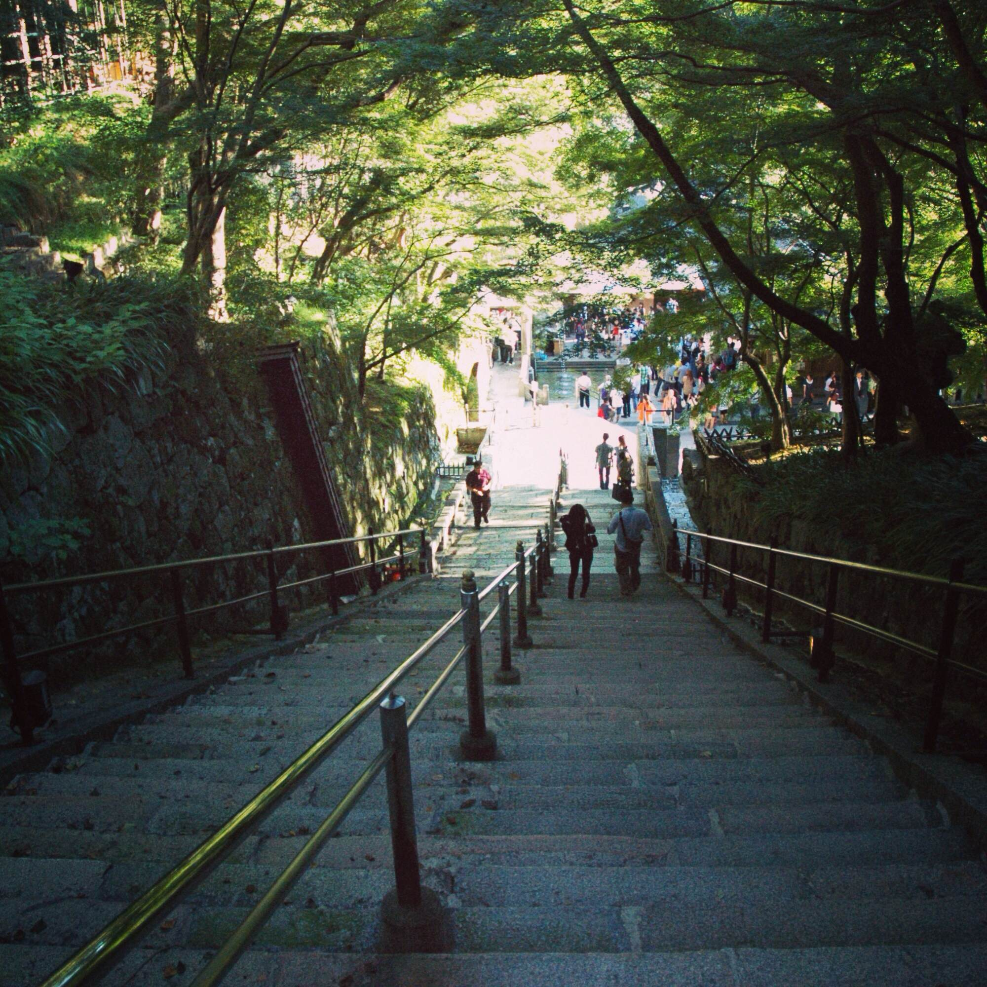 kyoto buddhist singles Japan tours and tour holidays  peaceful buddhist temples and intricate tea ceremonies  kyoto with its picturesque temples,.
